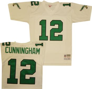 new product 97e6d cb115 Philadelphia Eagles Randall Cunningham Premier Throwback ...